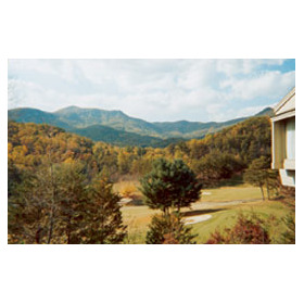Foxrun Townhouses - View From Balcony