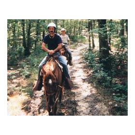 Horseback Riding at the Skyline Ranch Resort