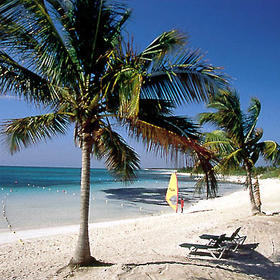 Sole Vacation Club at Sunscape Tulum - Beach