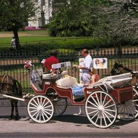 Area Carriage Rides