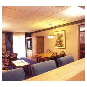 Mountain Laurel Resort and Spa - Unit Living Area