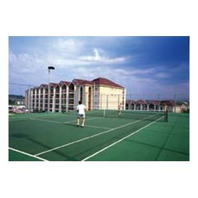 The Surrey Grand Crowne Resort and Country Club - Tennis Courts