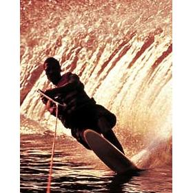 Area Water Sports