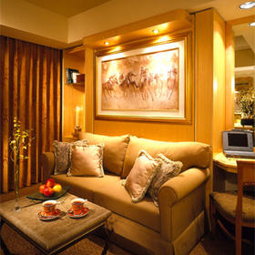 The Villas at Polo Towers - Unit Living Area