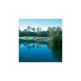 Carter Plantation - Golf Course