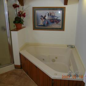 Master bath whirlpool and shower