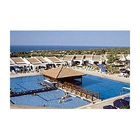 Dedeman Olive Tree - Around The Pool